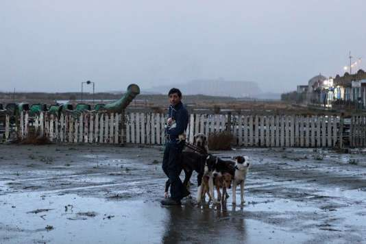 Une scène du film italien de Matteo Garrone,« Dogman».