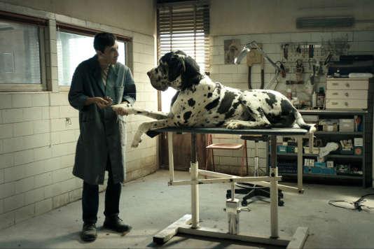 Marcello Fonte dans« Dogman», de Matteo Garrone.