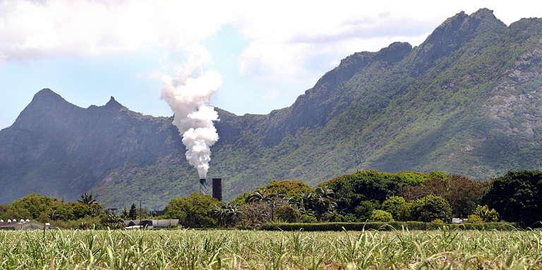 Champ de cannes et usine de sucre à Triolet, dans le nord de l'île Maurice.