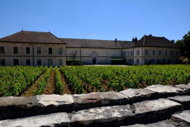 Le château de Chassagne-Montrachet (Côte-d'Or) et une partie de son vignoble.
