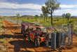 Une barrière antichats dans la réserve de Newhaven, en Australie.