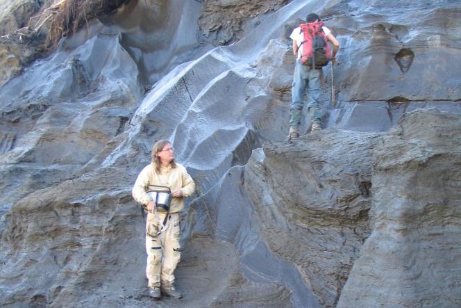 La découverte d'ADN ancien dans le permafrost, comme ici dans le nord du Canada, a ouvert la voie à la recherche de traces génétiques d'espèces dans tous les milieux.