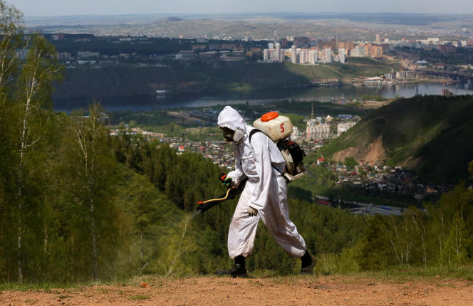 Parmi les mesures qui prendront effet durant le Mondial, Vladimir Poutine souhaite empêcher la prolifération de nombreux insectes.
