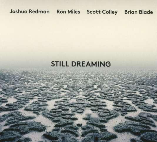 Pochette de l'album« Still Dreaming», de Joshua Redman, Ron Miles, Scott Colley et Brain Blade.