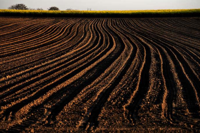 Un Risque D Accaparement Des Terres Agricoles En France