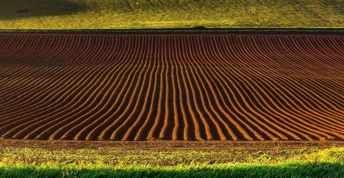 En 2017, le marché des surfaces agricoles a atteint 4,6 milliards d'euros en valeur, un niveau record.
