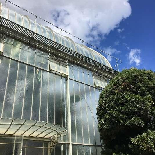 Vue d'une des serres du Jardin botanique de Genève.