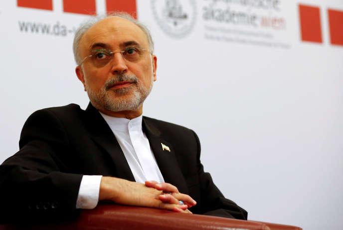 « La pression américaine a mis en sourdine une critique du fonctionnement général de l'Etat iranien, qui s'était exprimée publiquement jusqu'en son sein dans la vague de janvier, au Parlement et dans les ministères» (Le directeur du programme nucléaire iranien, Ali Akbar Salehi, en 2016).
