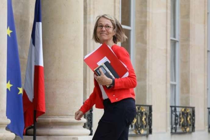 Françoise Nyssen, ministre de la culture, arrive à l'Elysée le 23 mai.