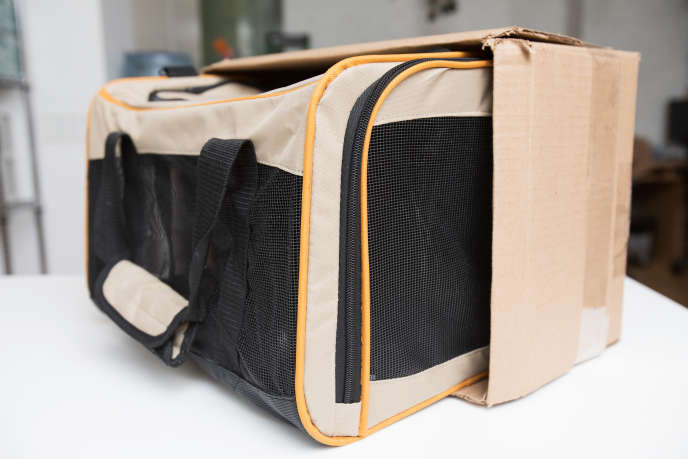 08e2e74533 Légende : Cette boite en cartonn a la dimension moyenne d'un espace  disponible sous le siège d'un avion. Le sac de transport doit pouvoir s'y  nicher.