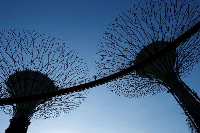 Les structures de «Gardens by the Bay», à Singapour.