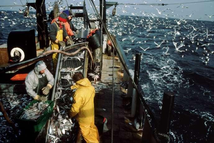 « Des décennies de surpêche, de pratiques de pêche non durables et de pêche illicite ont exercé des pressions extrêmes sur cette ressource vitale.»