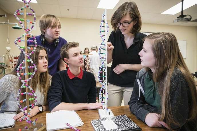 Etudes des structures de l'ADN en classe.