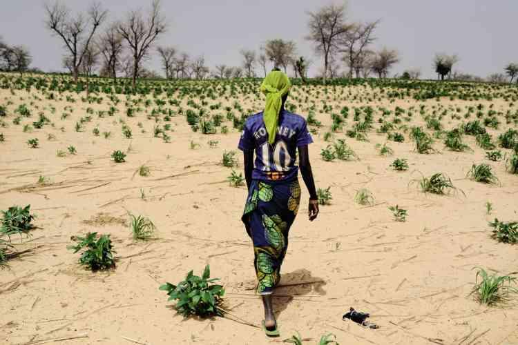 Wayne Rooney, Niger, juin 2016. L'attaquant anglais, mère detrois enfants, rentre chez lui après avoir travaillé auchamp.