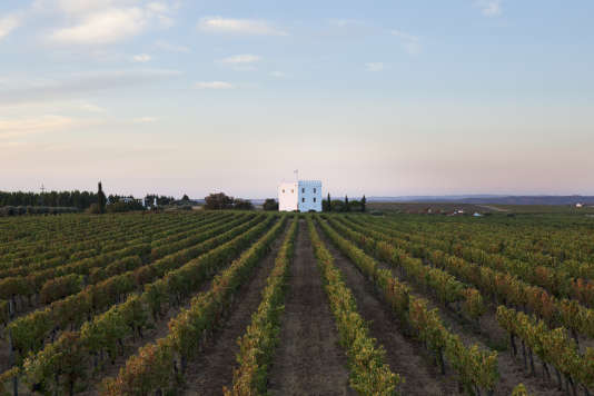 Le domaine viticol de Herdade do Esparao.