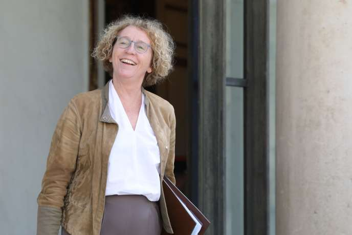 « J'invite les pouvoirs publics à considérer l'ensemble de la protection sociale et non à la restreindre aux seuls travailleurs des plates-formes, comme le prévoient certains amendements qui achèveraient d'exclure de la protection sociale les 90 % à 92 % d'autoentrepreneurs qui ne travaillent pas pour des plates-formes» (Muriel Penicaud, le 18 juin, à l'Elysée).