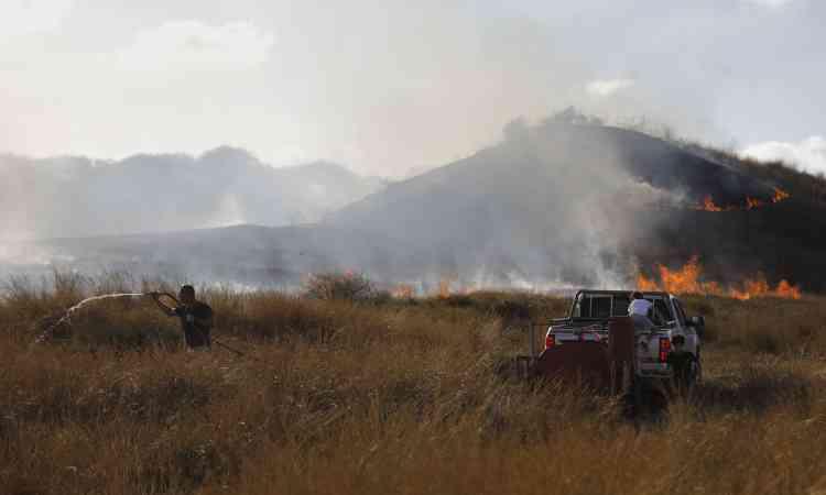 Un Israélien tente d'éteindre le feu, près du kibboutz Be'eri, le 18juin. Aidés par le vent et la chaleur, les objets volants enflammés atterrissent dans les buissons secs, causant des incendiens qui se répandent rapidement.