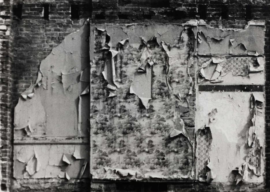 """«La série des """"Walls"""" capte les vestiges de murs d'immeubles abandonnés du Bronx, qui d'intérieurs sont devenus extérieurs du fait d'une destruction imparfaite. Tel un """"archéologue urbain"""", l'artiste repère les traces d'anciennes habitations – peinture écaillée, lambeaux de papier peint – qui proclament l'obsolescence du lieu en tant que """"chez soi"""".»"""