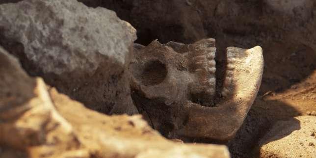 Squelette dégagé dans le cimetière médiéval d'Atlit, en Israël.