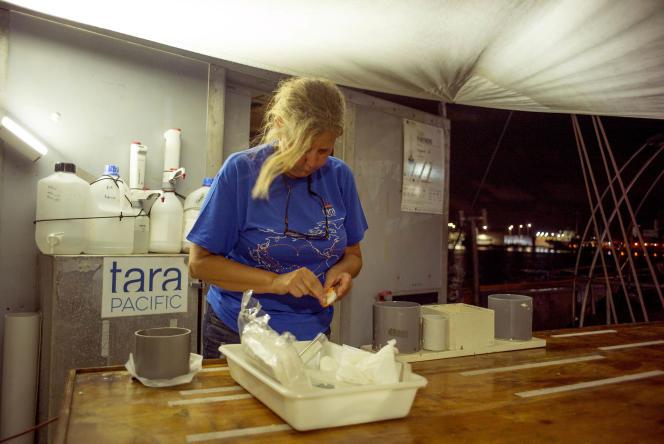 La spécialiste du plastique à l'Observatoire océanologique de Villefranche-sur-Mer, Maria Luiza Pedrotti, prépare son équipement.
