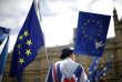Rassemblement contre le Brexit devant le Parlement de Westminster, à Londres, le 20 juin.