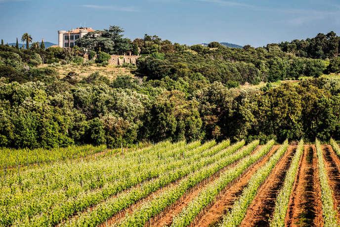 Après l'incendie de l'été 2017, le domaine du Château de Brégançon a perdu environ 20%de sa production.