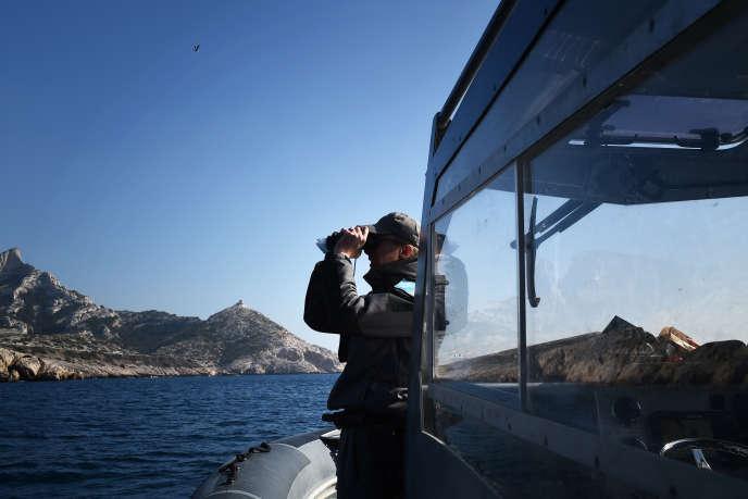 Un inspecteur de l'environnement patrouille dans le parc national des Calanques.
