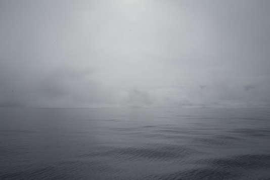 A bord de« Tara», le 29 juin.