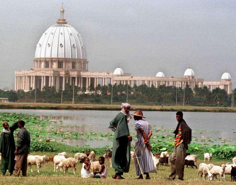 Des bergers font paître leurs troupeaux au bord du lac qui sépare la basilique Notre-Dame-de-la-Paix et le quartier populaire de Dioulabougou de Yamoussoukro.