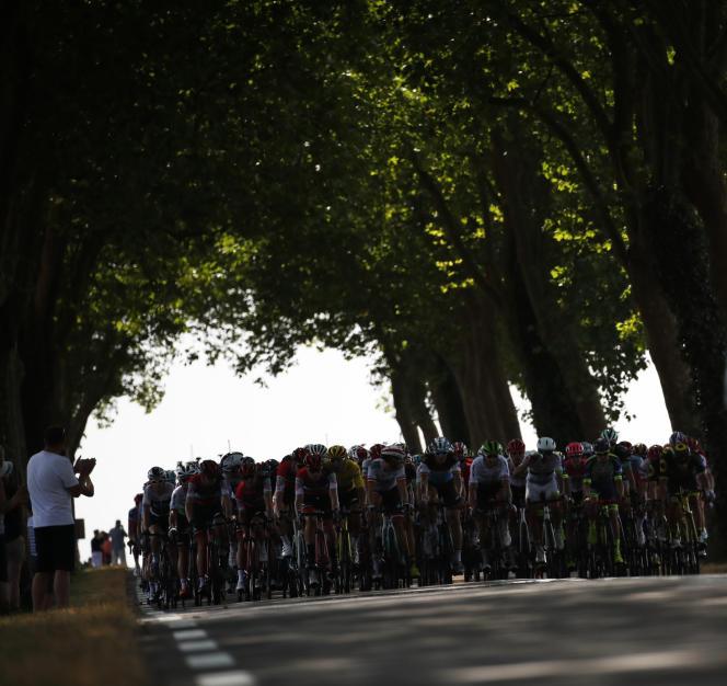 Le peloton durant la septième étape du Tour de France.