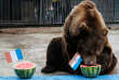 L'ours Buyan, du zooRoyev Ruchey de Moscou, prédit la victoire de la Croatie face à la France à la veille de la finale de la Coupe du monde, le 14 juillet 2018.