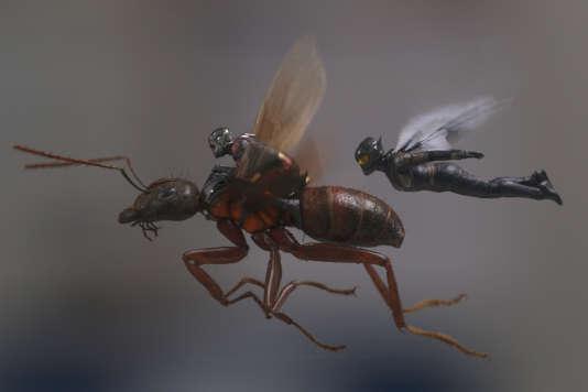 Paul Rudd et Evangeline Lilly incarnent des super-héros miniaturisés,Scott Lang etThe Wasp/Hope Van Dyne.