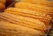 La DGCCRF a été informée d'un risque de contamination à la listeria de légumes surgelés, notamment le maïs.