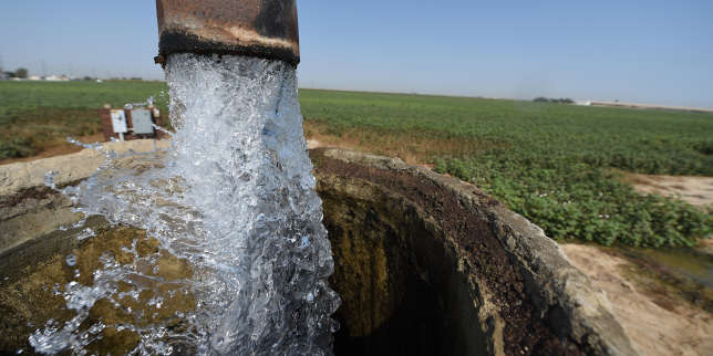 Irrigation water at a cotton field in Porterville, California August 24, 2016. Agricultural fertilizers as well as cow manure from dairy farms have led to domestic wells in California's Central Valley having dangerously high levels of nitrates making it unsafe to drink. In California's top farming regions, up to 250,000 consumers are highly susceptible to encountering nitrate contamination in their drinking water, according a report released earlier this month by the Agricultural Sustainability Institute at the University of California at Davis. / AFP PHOTO / Robyn BECK