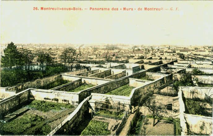 Image d'archivedes murs à pêches de Montreuil.