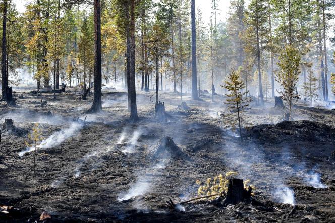 Après un incendie près de Sarna, dans le centre de la Suède, le 26 juillet.