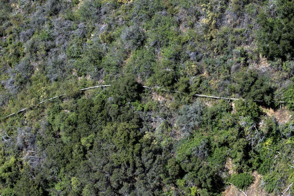 L'agence chargée de la gestion de l'eau de Californie a accordé un permis d'exploitation à Nestlé qui avait expiré en 1988. Depuis vingt-sept ans, la compagnie opérait en dehors de toute supervision environnementale.
