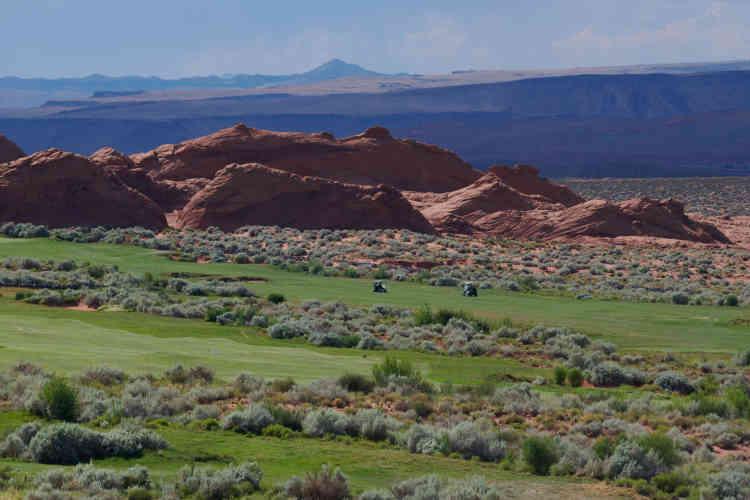De la végétation désertique a été plantée sur le golf de Sand Hollow pour réduire la surface du « green ».