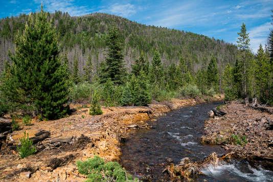 Une couleur orangée remonte à la surface, en aval de la station d'épuration de la mine de Mike Horse près de Lincoln (Montana), le 26 juin.