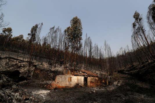 Dans la nuit de lundi à mardi, les flammes se sont approchées de Monchique, dans le sud du Portugal, laissant derrière elles un paysage noirci avec des maisons incendiées.
