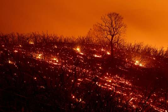 Embers smoulder along a hillside after the Ranch Fire, part of the Mendocino Complex Fire, burned though the area near Clearlake Oaks, California, on August 5, 2018. Several thousand people have been evacuated as various fires swept across the state, although some have been given permission in recent days to return to their homes. / AFP / NOAH BERGER