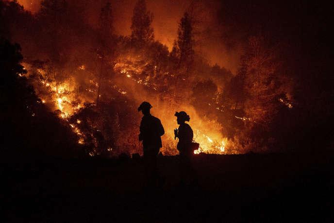 Intervention des pompiers sur leMendocino complex fire, près de Ladoga au nord de la Californie, le 7 août.