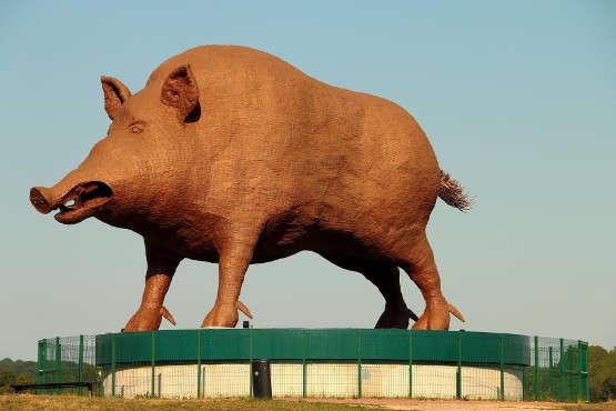 «Woinic»est une sculpture desangliergéant réalisée par lesculpteurardennais Eric Sléziakentre le1erjanvier1983et le15décembre1993. Elle est située sur l'aire d'autoroute des Ardennes de l'A34.