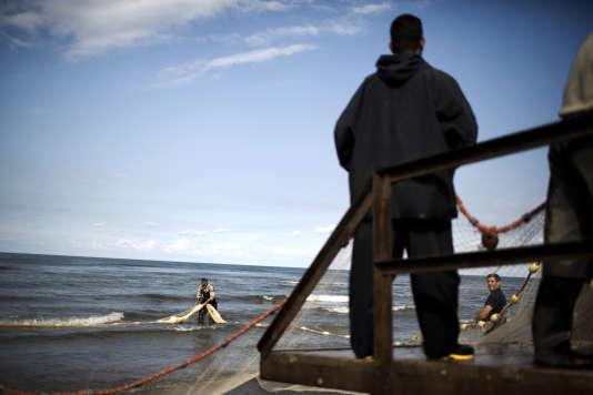 Des pêcheurs iraniens remontent leurs filets, sur la ville côtière de Koshk Estalkh, au bord de la mer Caspienne, en novembre 2013.