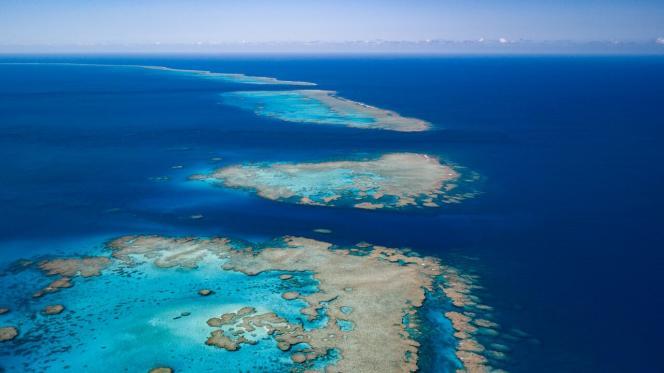 Les récifs d'Entrecasteaux vus du ciel.
