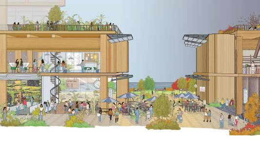 Le projet fait la part belle aux immeubles en bois et veut se tourner vers le lac Ontario.