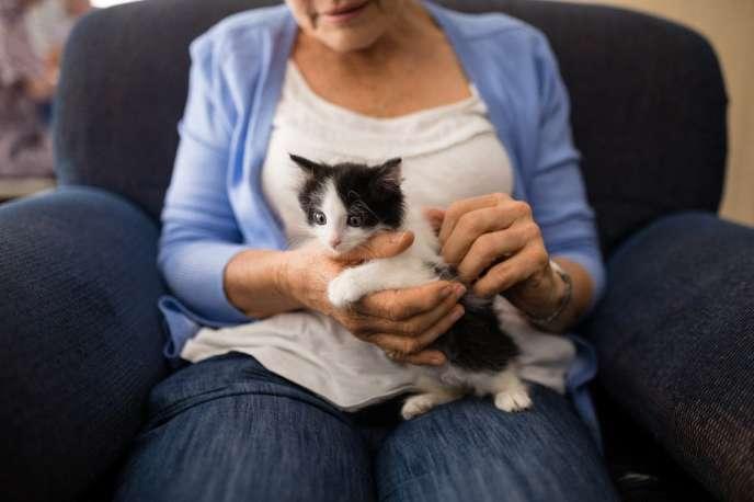 Le gouvernement britannique veut s'attaquer aux boutiques de vente d'animaux peu scrupuleuses.