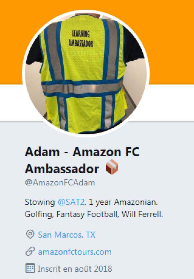 Les comptes de ces« ambassadeurs» sont tous construits selon le même modèle.