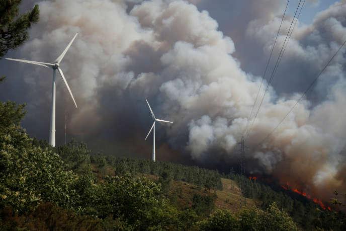 Lors d'un feu de forêt, à Cadafaz, près de Gois, dans le centre du Portugal, en juin 2017.