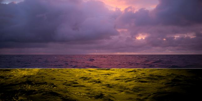Contaminations : nous avons navigué sur l'immense « soupe de plastique » du Pacifique